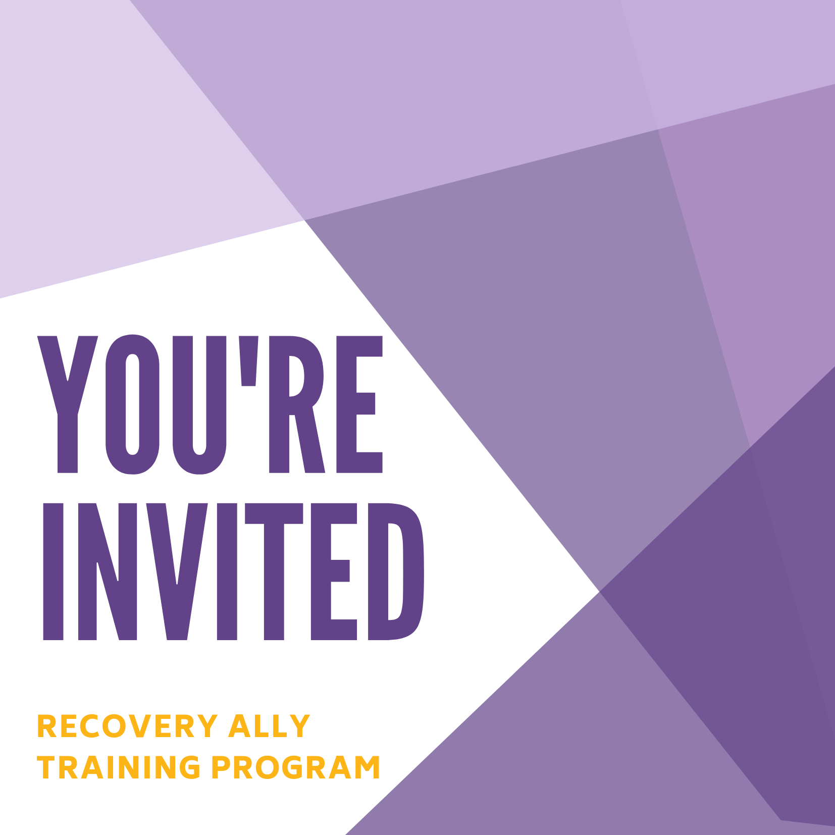 Recovery Ally Training promo